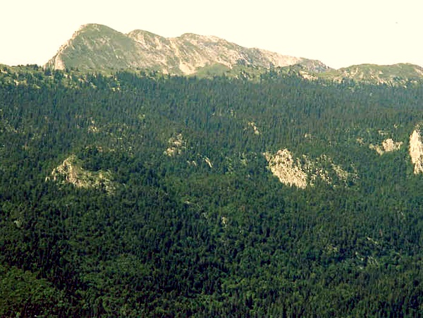 Photograph of the eastern slopes of la Grande Sure